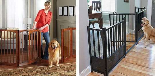 How to Choose a Dog Gate - Improvements Blog