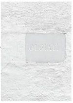 Dado Built and Inhabited by Rudolf Olgiati and Valerio Olgiati