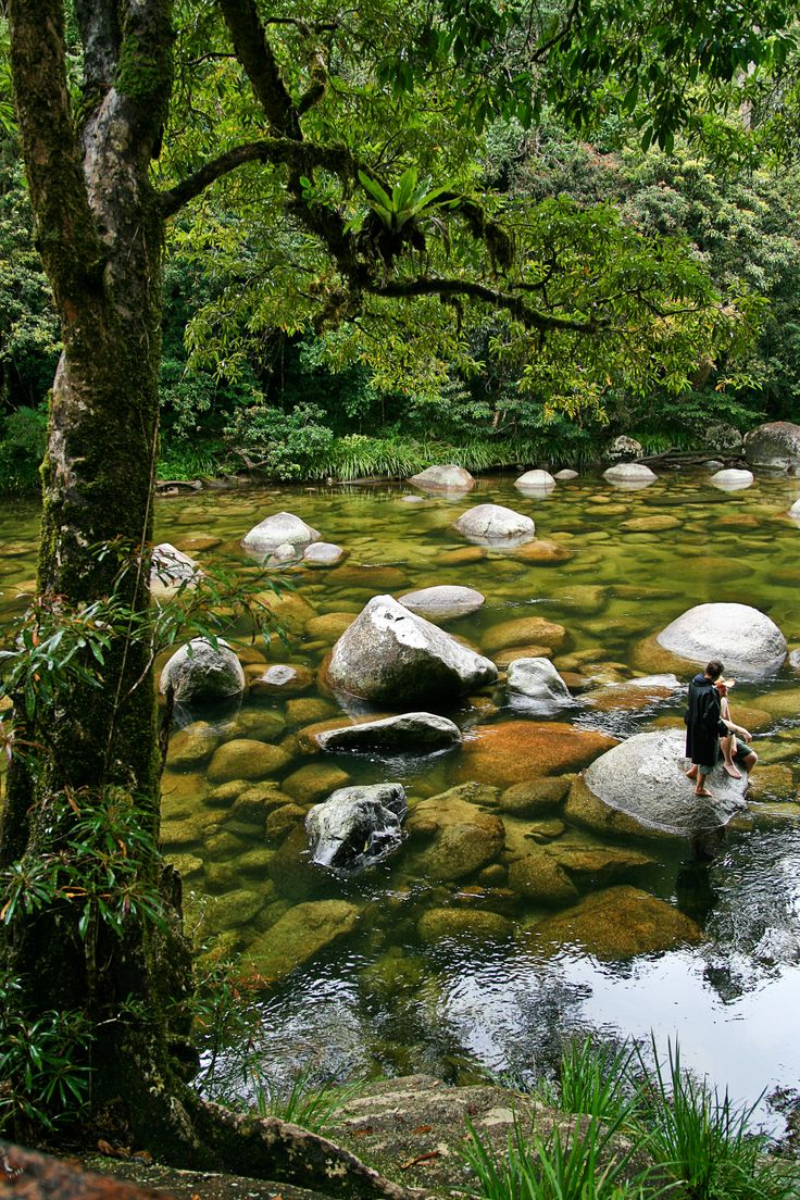 Mossman Gorge in the Daintree National Park, Queensland, Australia