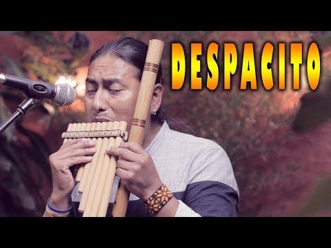 Luis Fonsi Despacito Ft Daddy Yankee Flute Instrumental Youtube Daddy Yankee Flute Native American Music