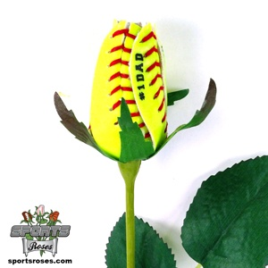 Every man roots for their favorite sports team all too passionately, your dad included. He probably has sports memorabilia scattered all over the house reminding him of great moments from the past. You can help him celebrate his love for sports with a Sports Rose specifically tailored to his interest. Sports Roses are so unique, most of his friends won't have one, so you know it will be a source of pride and joy this coming Father's Day. $19.95