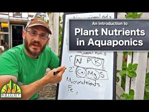 Plant Nutrients for Aquaponics