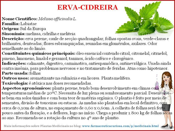 Erva-cidreira Para mais informações sobre as Plantas Medicinais acesse os links: http://www.farmaceuticacuriosa.com/p/plantas.html http://www.farmaceuticacuriosa.com/p/medicinais.html