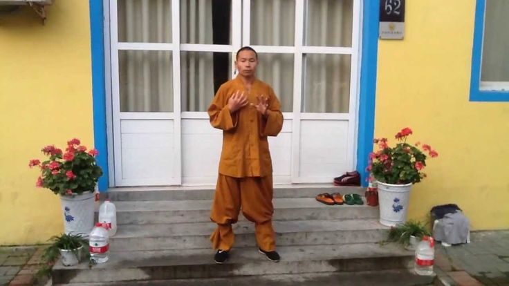 Qi Gong morning session by Master Shi Yan Jun                                                                                                                                                                                 More