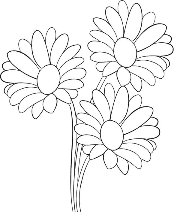 Three Spray Flower Coloring Sheets
