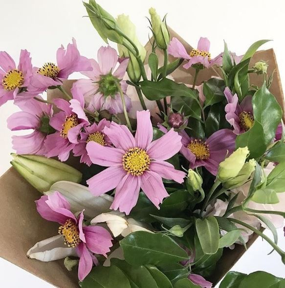 Looking for flowers today? You can pre order a posy for any day in future or try weekly flowers. The Cheap Flowers Sunshine Coast, Florist Sunshine Coast is available for you.