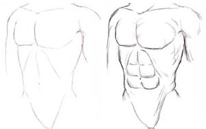 Figure Drawing : How to Draw Human Body, Torso with Lesson and ...