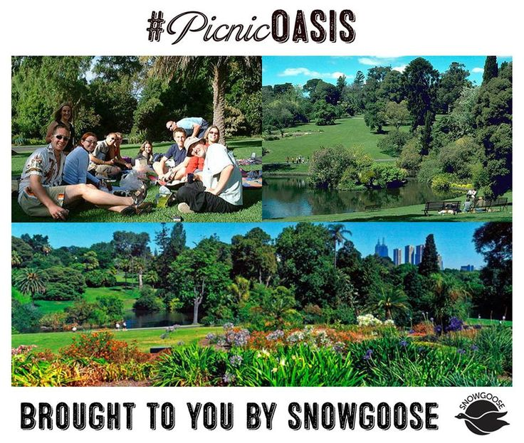 With its stunning landscaped gardens including a children's garden, peaceful lakes and amazing collection of plants, the Royal Botanic Gardens Melbourne are a must if you're looking for a beautiful place to unpack the picnic hamper. #MelbournesBestPicnicSpots #Picnics #SnowgooseHampers