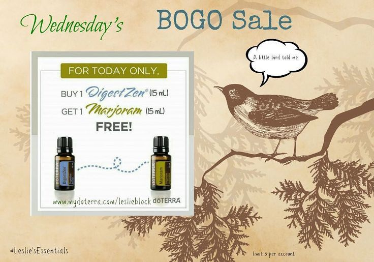 What is today's BOGO you ask?? Here ya go....Buy one bottle of DigestZen essential oil blend (15ml) and get one bottle of Marjoram essential oil (15ml)FREE!! DigestZen is wonderful for ALL things Digestive.. upset stomach digestion indigestion feelings of nausea great for kiddos too! I even use it for my sinus discomforts (rub a small amt on my temples and forehead-- awww relief) Carry this blend with us everywhere we go great when traveling! Marjoram-- is a cousin to Oregano-- antibacterial…