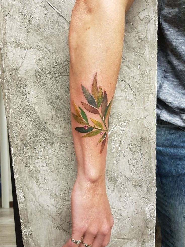 My new tattoo, artist brescia italy. Olive branch #tattoo