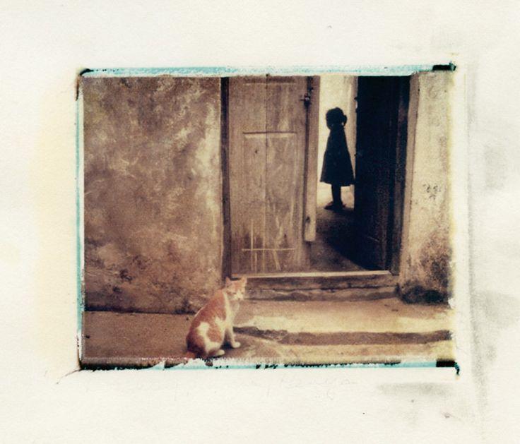 http://el-pako.livejournal.com/friends/