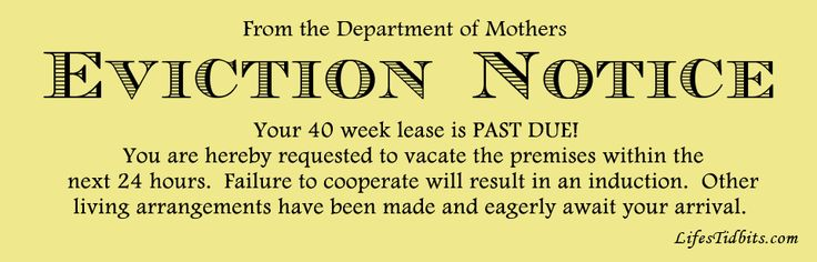 pregnancy eviction notice, 40 weeks pregnant, past due date  | Life's Tidbits