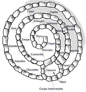 le jardin en spirale est un grand classique permaculturelle et un bon ...