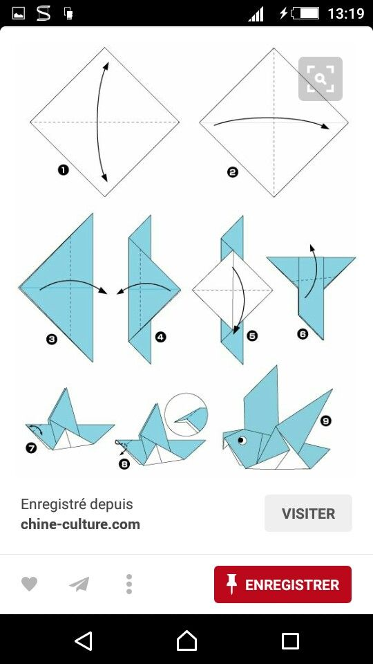 10288 best pigeons images on pinterest pigeon diving for Origami bird instructions