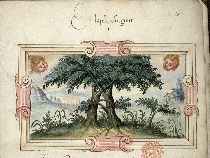 arbres enlacésParis Bibl. Mazarine ms. 3267 (avec