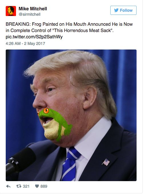 Someone Has Drawn A Frog On Donald Trump's Face