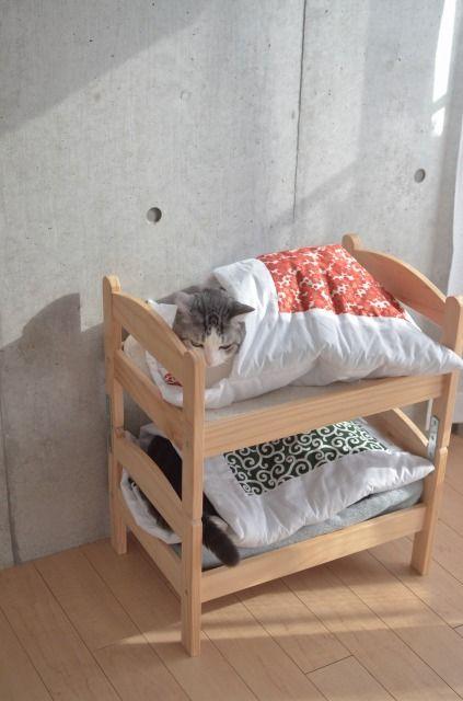 image:猫のためにお布団つきの猫用二段ベッドを作ってみた
