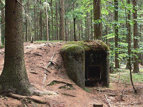 Lehké opevnění vz. 37 v Žamberských lesích
