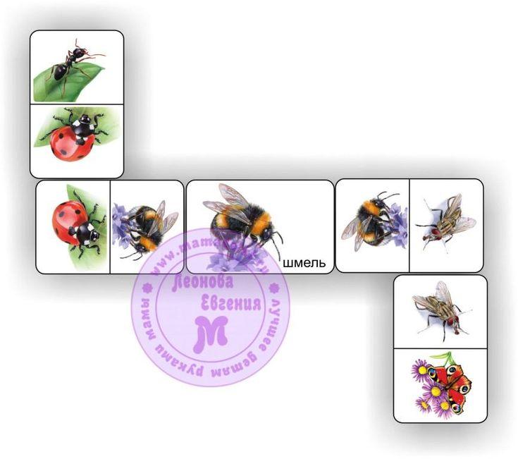домино насекомые 2