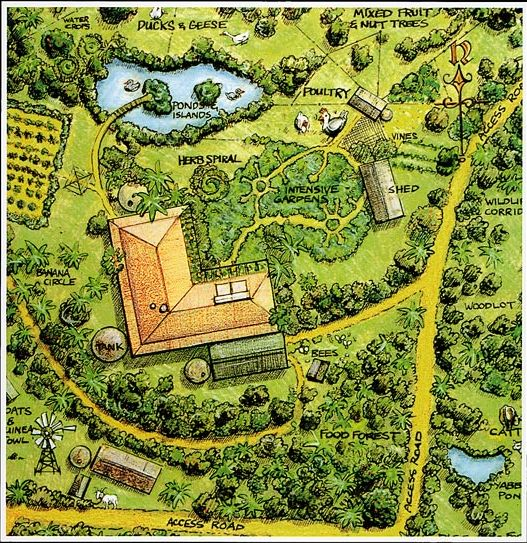 permaculture | Introduction to Permaculture, Bill Mollison, Tagari Publications, 1991