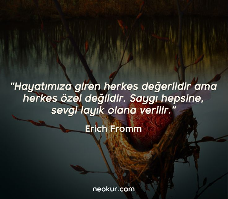 Sevme Sanatı, Erich Fromm