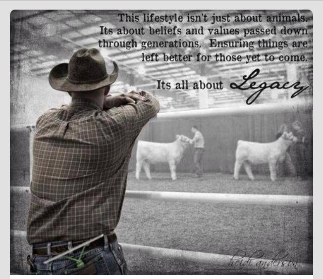 Animal Meme | Our Favorite Memes | Farm quotes, Cowboy ...