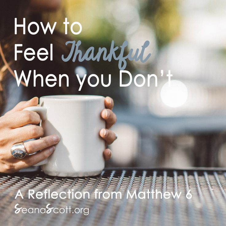Ever feel grumpy rather than grateful? Me too. This week's encouragement: How to Feel Thankful When You Don't, comes from Matthew Chapter 6. Happy Thanksgiving! LISTEN or READ here: http://www.seanascott.org/thankful-dont-feel/?utm_campaign=coschedule&utm_source=pinterest&utm_medium=Real.%20Faith.%20Moms.%20SeanaScott.org&utm_content=How%20to%20Feel%20Thankful%20When%20You%20Don%27t