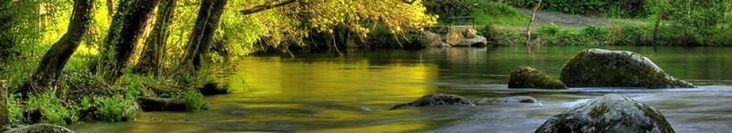 TEMA 13: ÁREA DE FIGURAS PLANAS | JUGANDO Y APRENDIENDO