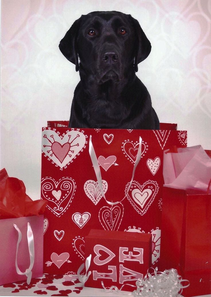 valentine's day black jokes