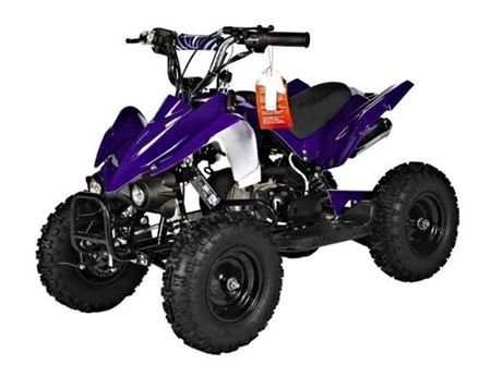 GMX Zipper Junior 49cc Quad Bike - Purple