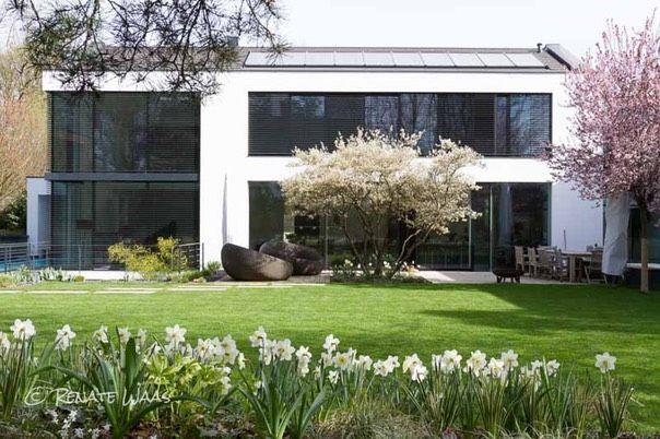 Gartenbau Waas Kupferfelsenbirne Fruehling Blumenzwiebeln -  im Herbst den Frühling pflanzen Beispiele für harmonische Zwiebelpflanzungen im Garten mit Narzissen im Halbschatten