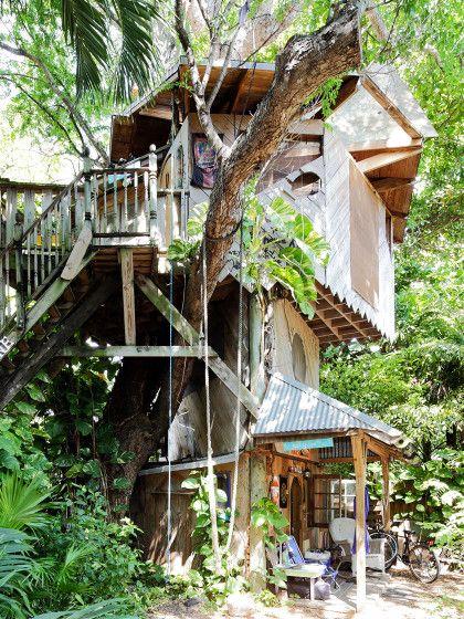 Wie wäre es z.B. mit diesem wilden Baumhaus in Miami? Eine Übernachtung in dem Traumhäuschen auf Bäumen kostet nur 60 Euro.