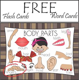 Free Body Parts Word Cards