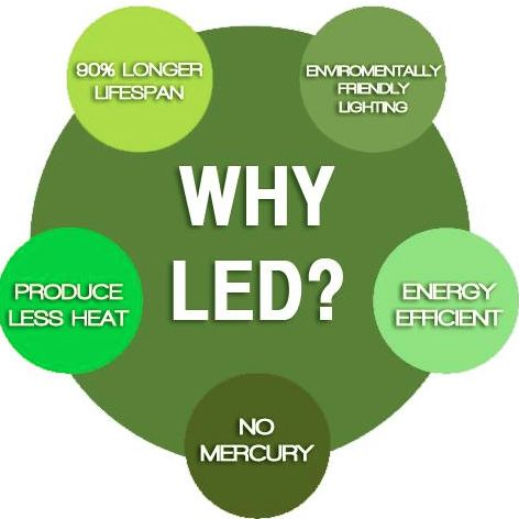 LED T-8 tubes are available at low prices which have an incredible ROI for businesses. Jump on the #LED train today! #greenplanet #LED
