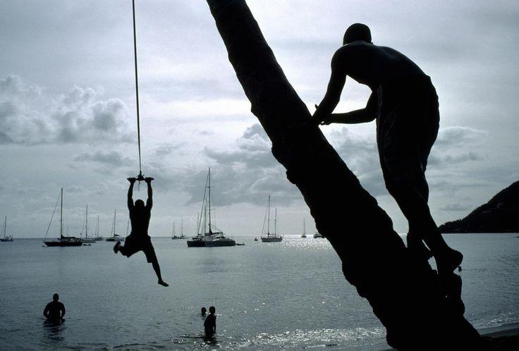 Alex Webb. DOMINICA. Portsmouth. 2009
