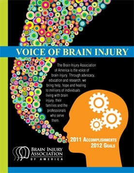 Cognitive Problems After Traumatic Brain Injury