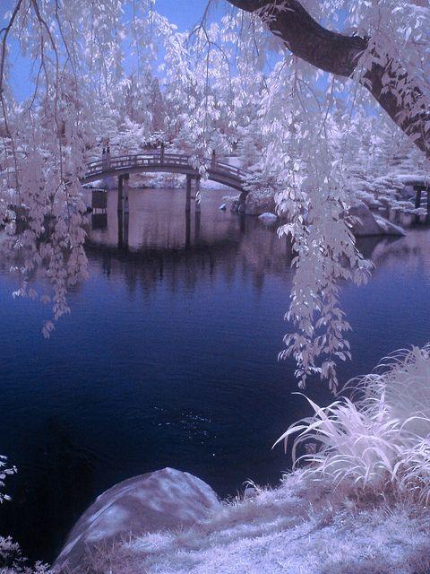 Sankeien Park, Hiroshima, Japan. 三景園、広島県三原市