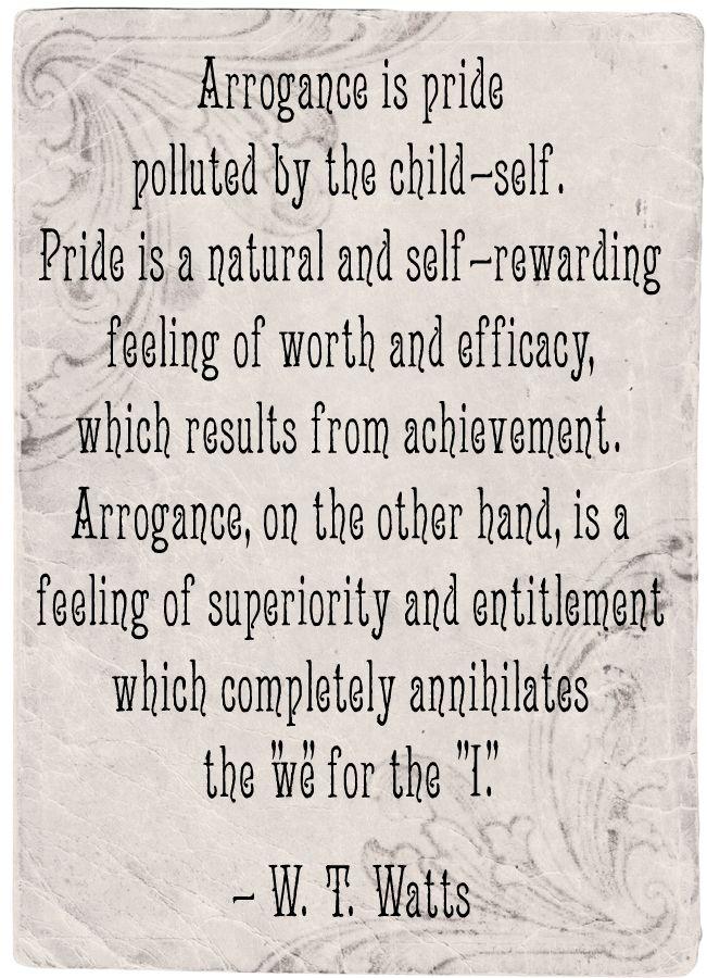 arrogance, vanity, pride, disdain, pretension, smug, vain, aloof, ego, egotism, hubris