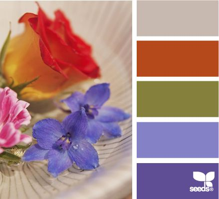 ✭ Flora Colors: Flora Colors, Bathroom Colors, Colors Wow, Colors Combinations, Seeds Colors, Colors Palettes, Colors Schemes, Accent Colors, Design Seeds Com