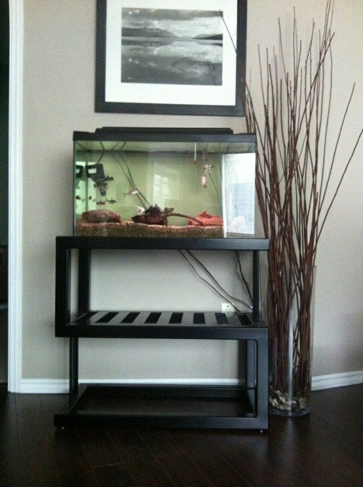 Custom Steel Aquarium Stands - WoodWorking Projects & Plans 10 Gallon Fish Tank Stand Metal
