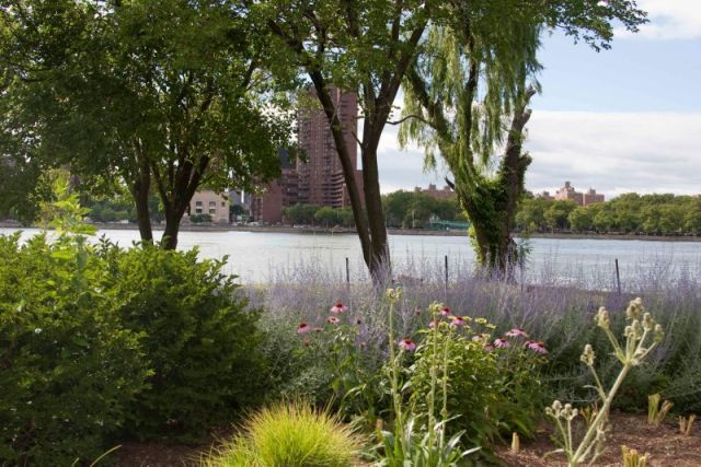 Randall's Island Park Events - Waterfront Garden Tour : NYC Parks