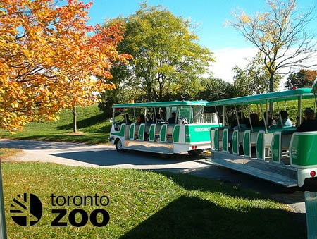 #torontozoo A world class zoo.  Open year round.