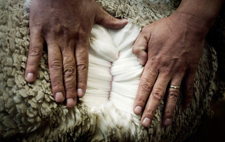 About - Merino Wool Baselayer, Merino Wool Thermal Underwear, Merino Wool Clothing and Merino Wool Socks