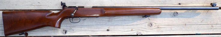 Remington 513T - .22LR