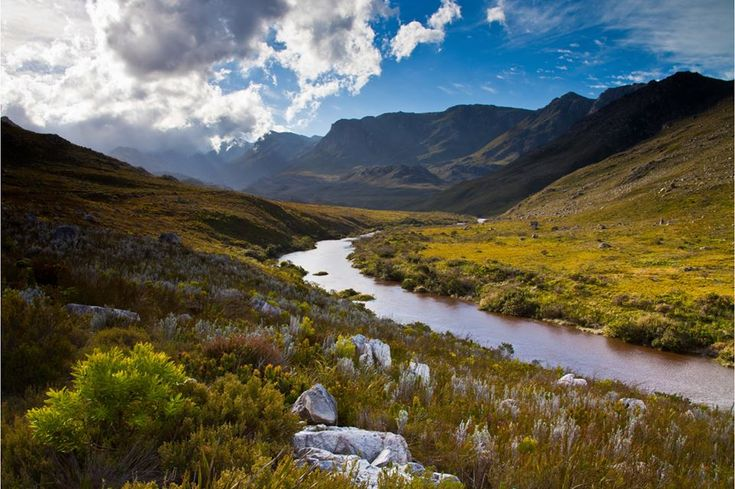 Western Cape State of Biodiversity Report 2017 https://cstu.io/b1ecbe
