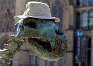 The very versatile Tilley Hat