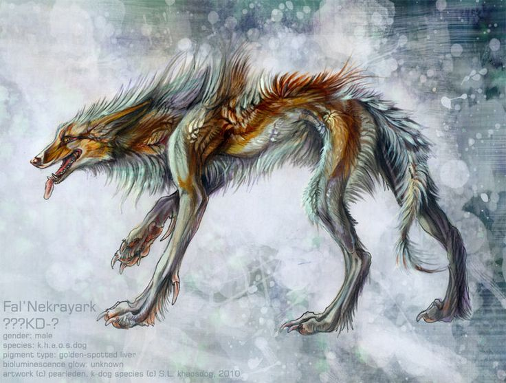 A Lot Of Maned Wolf By Loputyn Deviantart Com On: 277 Best Images About Fantasy Beasts On Pinterest