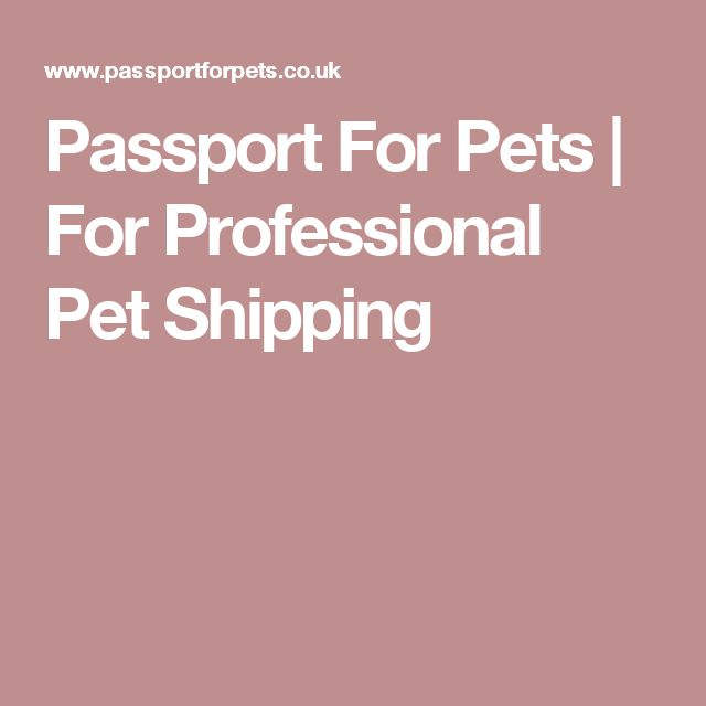 Passport For Pets   For Professional Pet Shipping