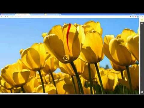 I Video nella Didattica - Seconda Parte: Creare e Gestire Lezioni, Quizzes, Discussioni con i Video