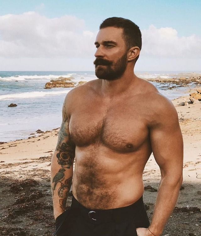 Alec's body type and maybe face | Alec | Pinterest | Hairy men, Beefy men  and Bearded men